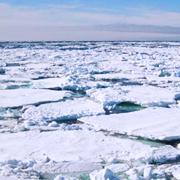 Prosperan los nuevos modelos climáticos
