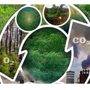 Monitoreo de biomasa y carbono forestal