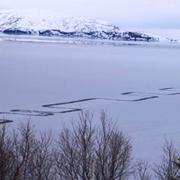 Foto: Einar A.E. Sæmundsen / Thingvellir National Park