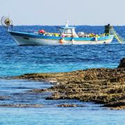Países de América Latina y el Caribe acuerdan prioridades para una pesca sostenible